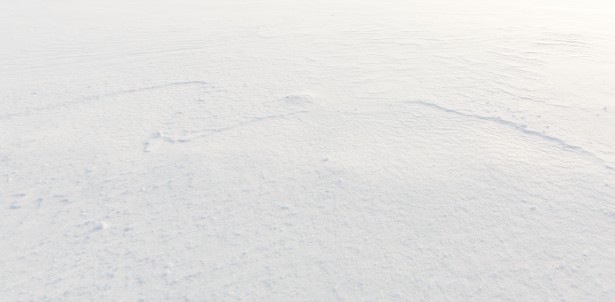 white-snow-background-14229598117Sf.jpg